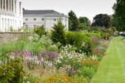 The Herbaceous Border