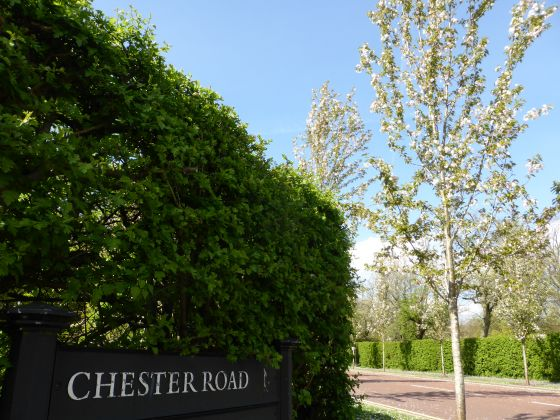 Chester Road sign