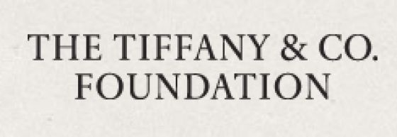 The Tiffany & Co. Foundation logo