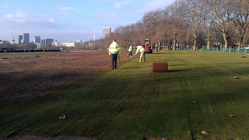 Hyde Park Restoration Work - First Turf Laid