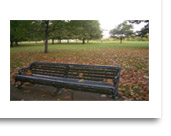 A park bench in Hyde Park