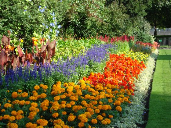St James's Park flower beds in the early 2000s