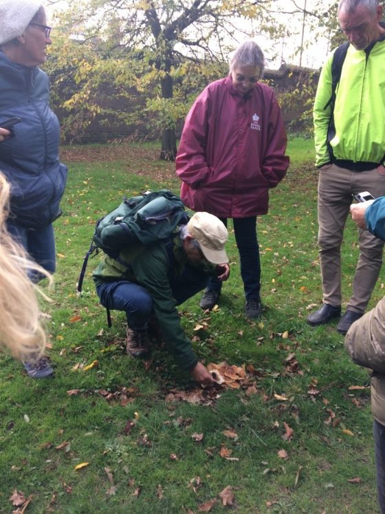 Mushroom expert Andy leading a fungi identification workshop in Greenwich Park