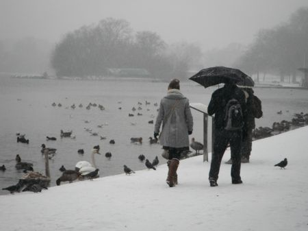 Wintry water – a historical tour of Hyde Park's natural water