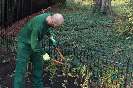 From horticultural apprentice to professional
