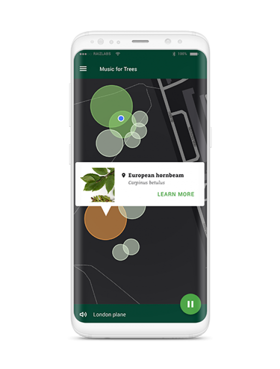 Mobile phone with Music for Trees app