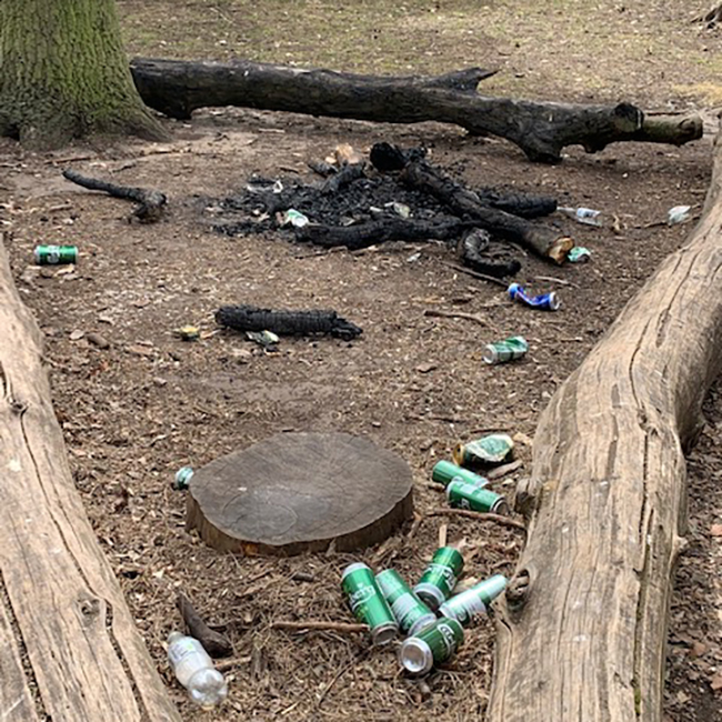 Barbecue damage and litter