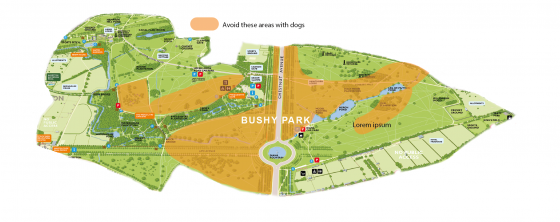 Areas to avoid in Bushy Park if you are walking a dog