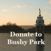 Donate to Bushy Park