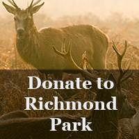 Donate to Richmond Park