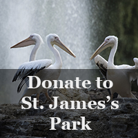 Donate to St. James's Park