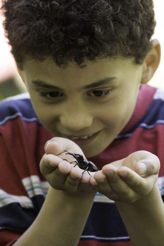 Child with stag beetle