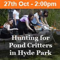 Hunting for Pond Critters in Hyde Park