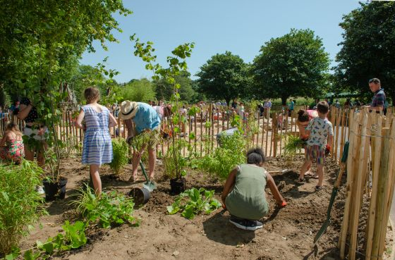 Adults and children working together to plant the playground's new trees