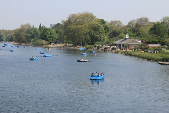 Pedalos on the Serpentine