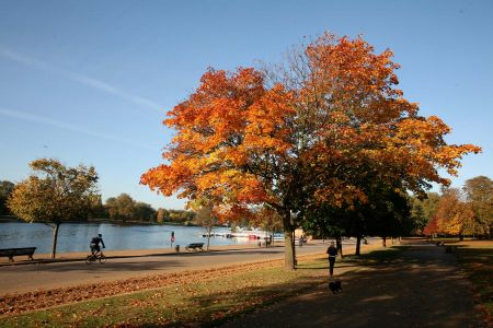 Top ten things to do in the Royal Parks this autumn