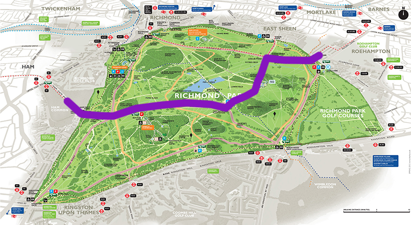 Richmond Park Quietway Route