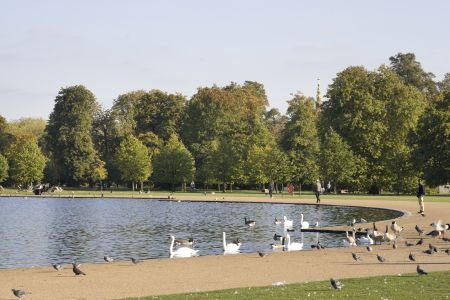 Kensington Gardens News: April-June 2017