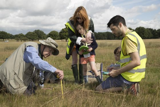 Citizen Science Ant Surveys Richmond Park
