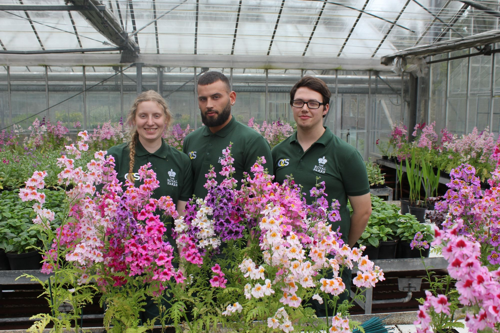 Royal Parks apprentices in nursery