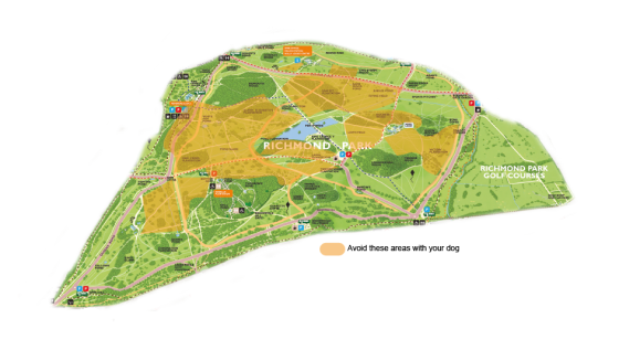 Map showing deer birthing areas in Richmond Park