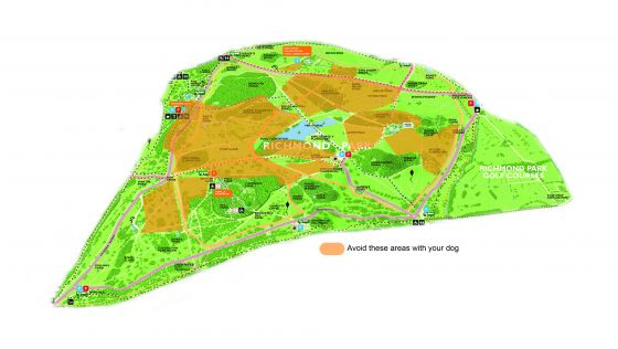 Areas to avoid when walking in Richmond Park