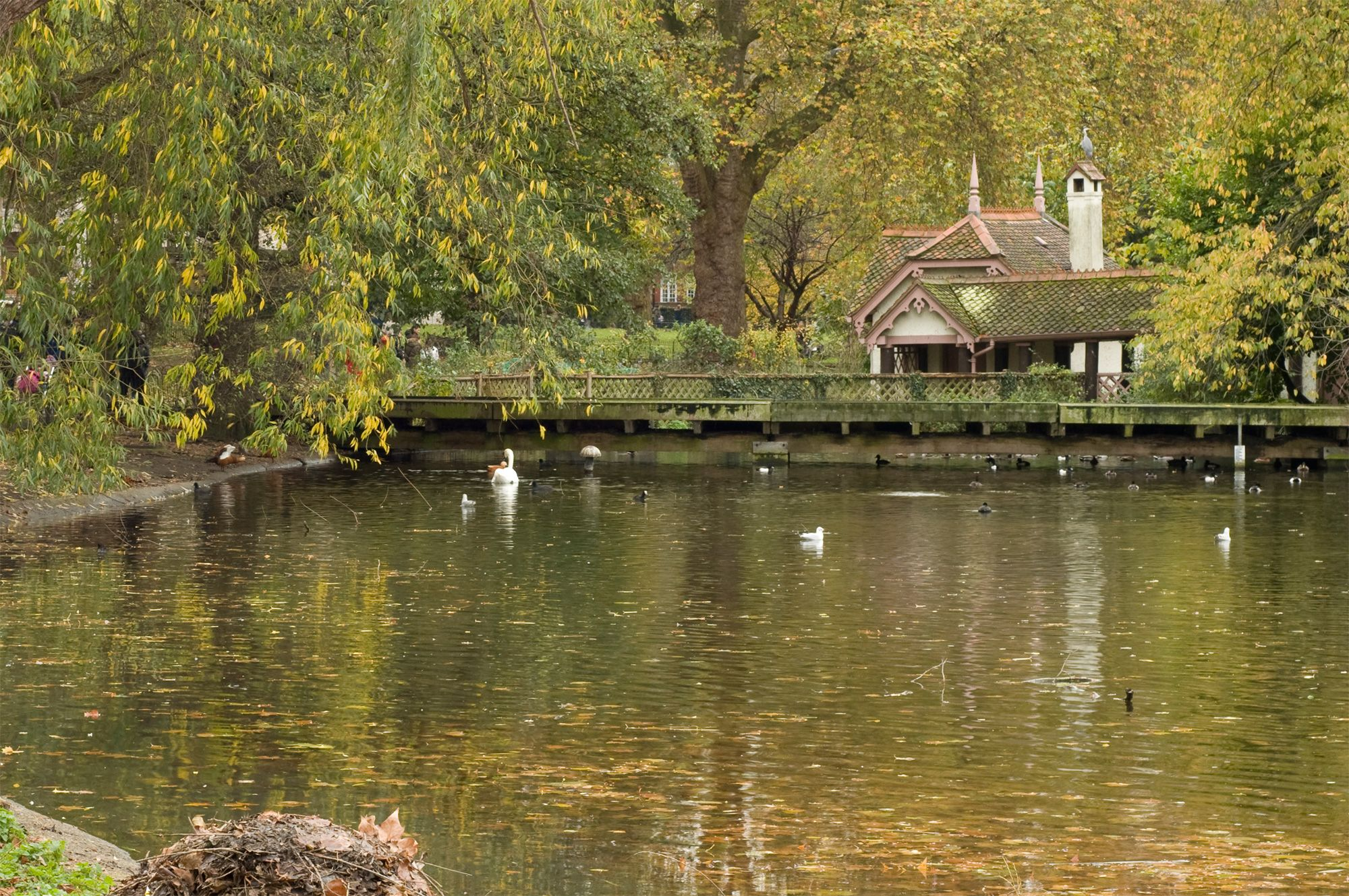 St James's Park lake and Duck Island Cottage