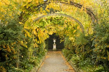 Wonderful Top Ten Things To Do In The Royal Parks This Autumn  Hyde Park  With Likable Leafy Pergola In St Johns Lodge Gardens With Astounding Tuttons Covent Garden Also Cheapest Rattan Garden Furniture Sets In Addition Garden Water Systems Automatic And Hilton Garden Inn Luton Airport As Well As Garden Cam Additionally Busch Gardens Safari From Royalparksorguk With   Likable Top Ten Things To Do In The Royal Parks This Autumn  Hyde Park  With Astounding Leafy Pergola In St Johns Lodge Gardens And Wonderful Tuttons Covent Garden Also Cheapest Rattan Garden Furniture Sets In Addition Garden Water Systems Automatic From Royalparksorguk