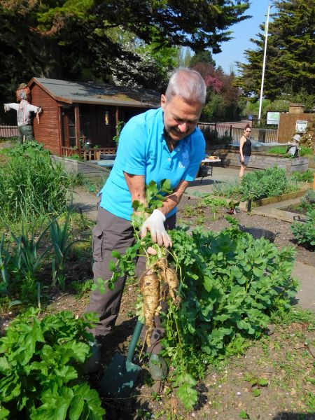 Then and now: The Regent's Park allotment teaching us how to grow