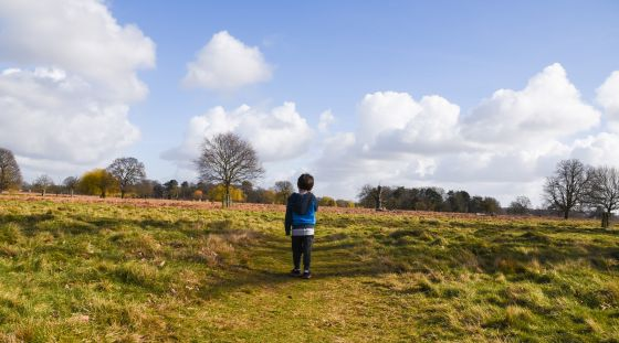 A young boy taking in the view in Bushy Park, by Emily Clark