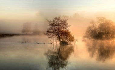 Pen Ponds at sunrise in Richmond Park, by Bett Atherton