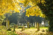 Lime Western Burial Zone - Brompton Cemetery