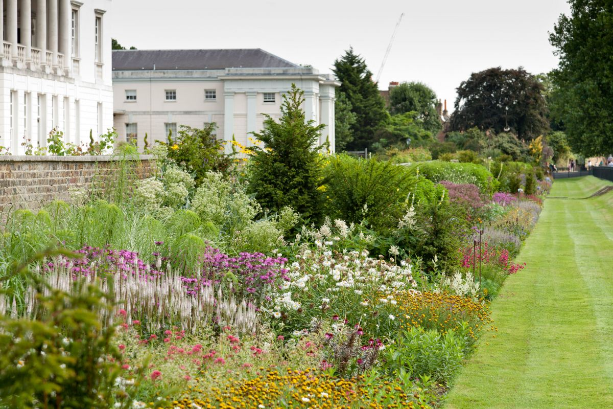 Herbaceous border greenwich park the royal parks for Herbaceous border design examples