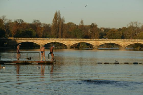 Serpentine Lido Swimmers