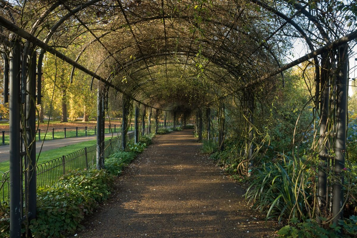The rose garden hyde park the royal parks for The landscape gardener