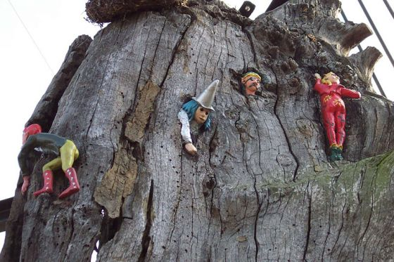 Four elves on the Elfin Oak