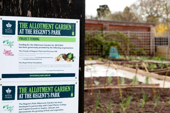 Sign at the entrance to The Allotment