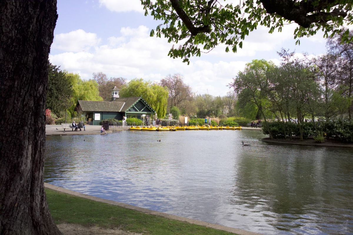 Boat and Pedalo Hire - The Regent's Park - The Royal Parks